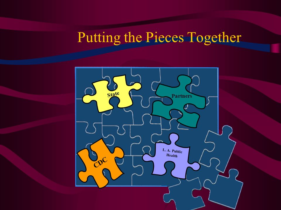 Putting the Pieces Together L. A. Public Health CDC State Partners