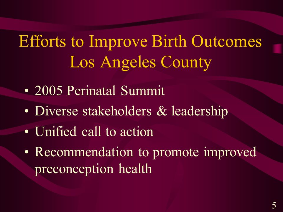 Efforts to Improve Birth Outcomes Los Angeles County 2005 Perinatal Summit Diverse stakeholders & leadership Unified call to action Recommendation to