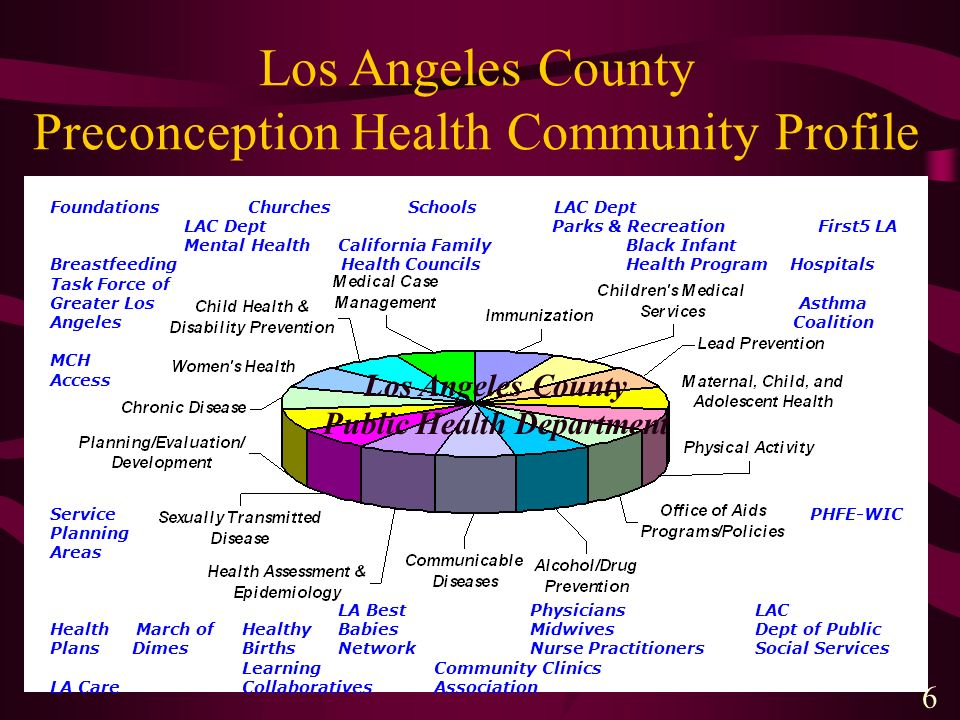 6 Los Angeles County Preconception Health Community Profile Los Angeles County Public Health Department Foundations Churches Schools LAC Dept LAC Dept