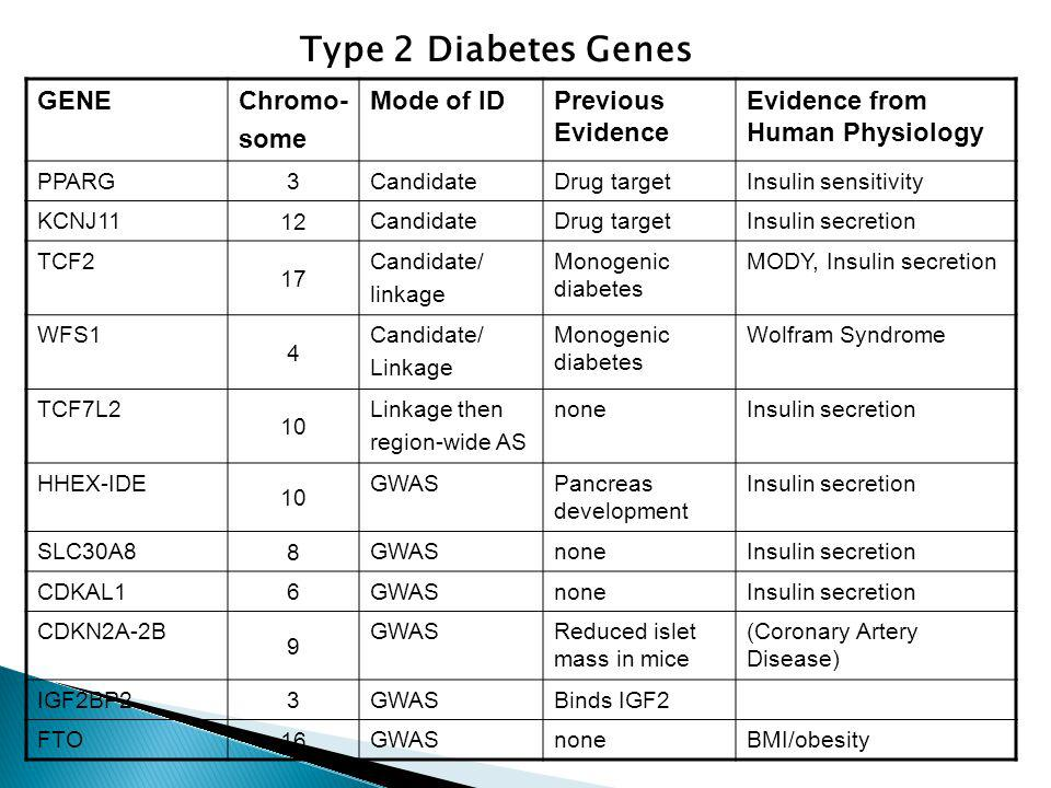 GENEChromo- some Mode of IDPrevious Evidence Evidence from Human Physiology PPARG 3 CandidateDrug targetInsulin sensitivity KCNJ11 12 CandidateDrug targetInsulin secretion TCF2 17 Candidate/ linkage Monogenic diabetes MODY, Insulin secretion WFS1 4 Candidate/ Linkage Monogenic diabetes Wolfram Syndrome TCF7L2 10 Linkage then region-wide AS noneInsulin secretion HHEX-IDE 10 GWASPancreas development Insulin secretion SLC30A8 8 GWASnoneInsulin secretion CDKAL1 6 GWASnoneInsulin secretion CDKN2A-2B 9 GWASReduced islet mass in mice (Coronary Artery Disease) IGF2BP2 3 GWASBinds IGF2 FTO 16 GWASnoneBMI/obesity Type 2 Diabetes Genes