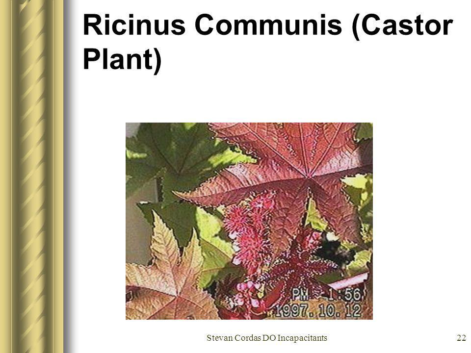 Stevan Cordas DO Incapacitants22 Ricinus Communis (Castor Plant)