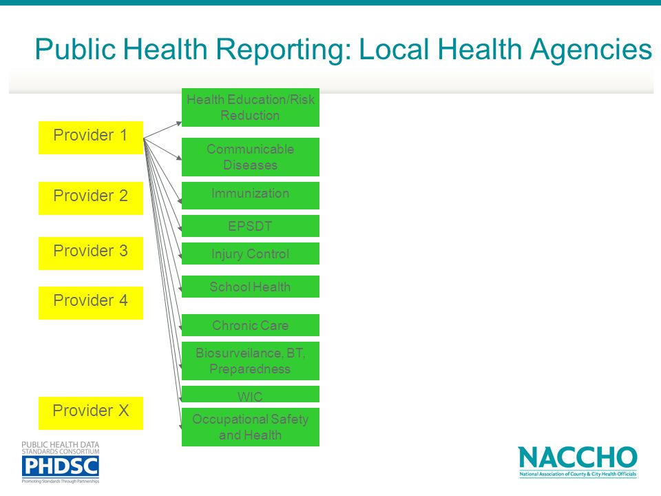 Provider 1 Provider 2 Provider 3 Provider 4 Provider X Public Health Reporting: Local Health Agencies Communicable Diseases Immunization EPSDT Injury