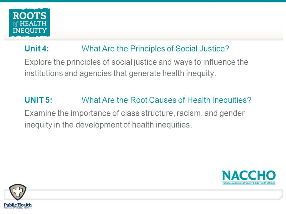Unit 4: What Are the Principles of Social Justice.