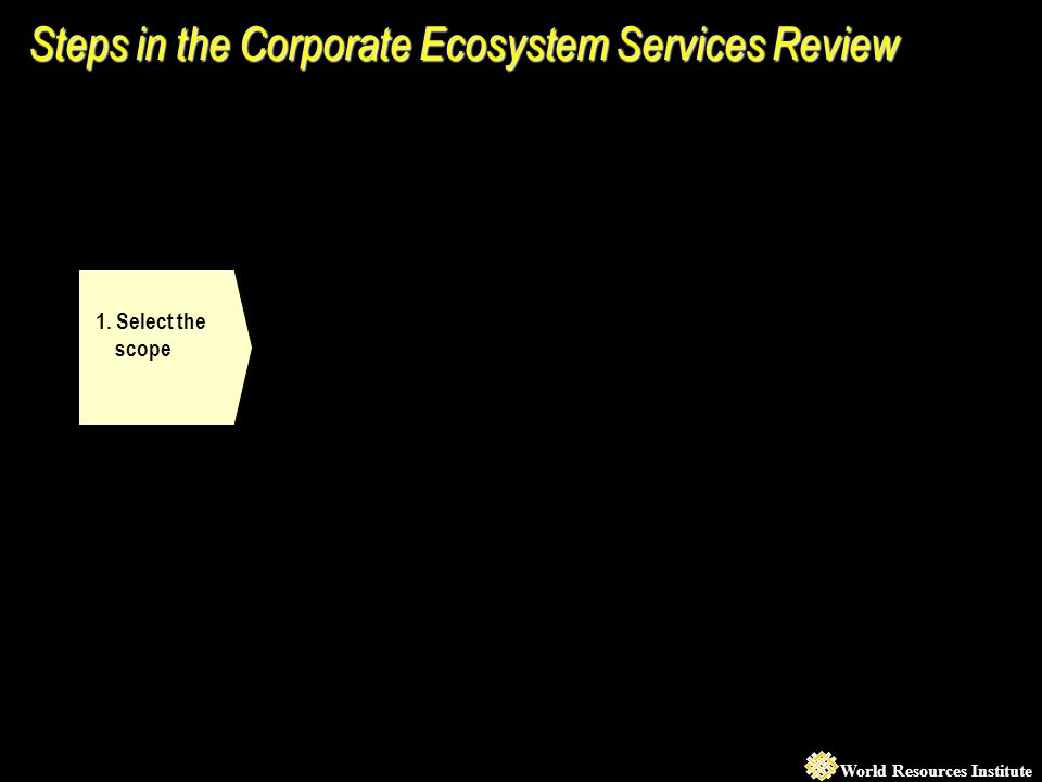 World Resources Institute 1. Select the scope Steps in the Corporate Ecosystem Services Review