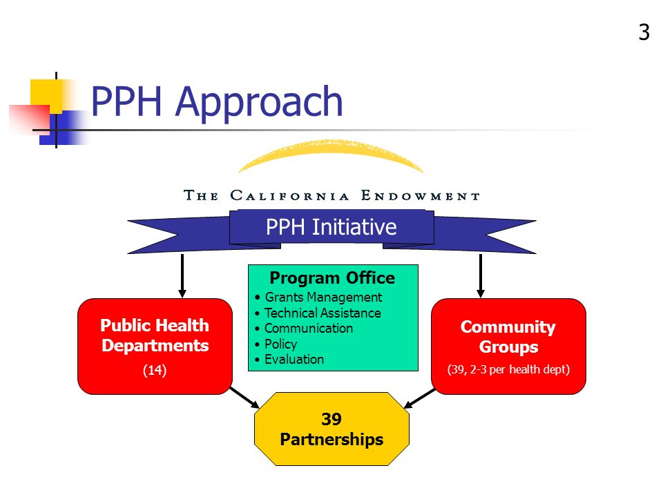 3 PPH Approach 39 Partnerships PPH Initiative Public Health Departments (14) Community Groups (39, 2-3 per health dept) Program Office Grants Management Technical Assistance Communication Policy Evaluation