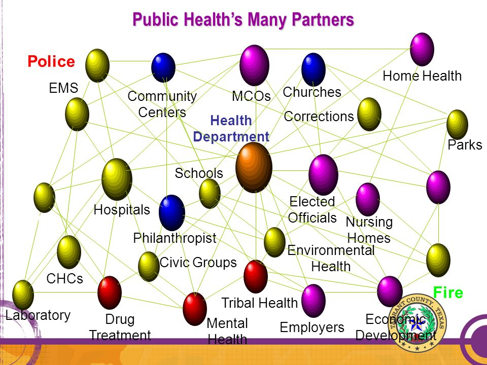 Public Healths Many Partners Public Healths Many Partners MCOs Home Health Parks Economic Development Mass Transit Employers Nursing Homes Mental Heal
