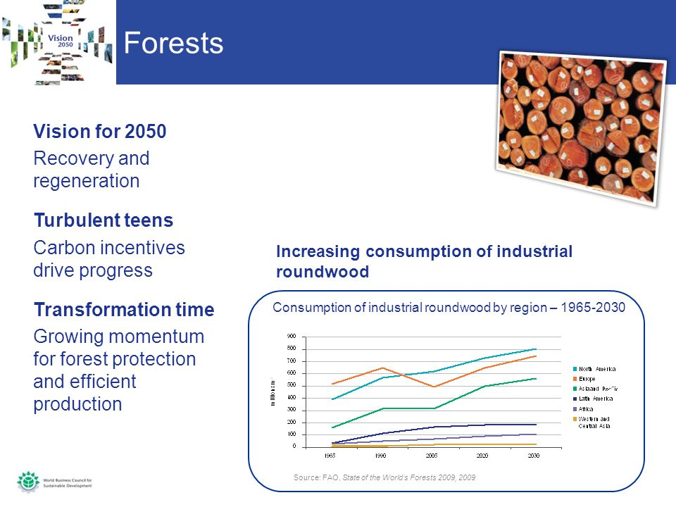 Forests Vision for 2050 Recovery and regeneration Turbulent teens Carbon incentives drive progress Transformation time Growing momentum for forest protection and efficient production Source: FAO, State of the Worlds Forests 2009, 2009 Consumption of industrial roundwood by region – 1965-2030 Increasing consumption of industrial roundwood