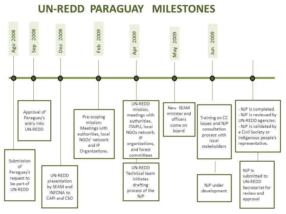 Ago 2008 Submission of Paraguays request to be part of UN-REDD Pre-scoping mission: Meetings with authorities, local NGOs network and IP Organizations