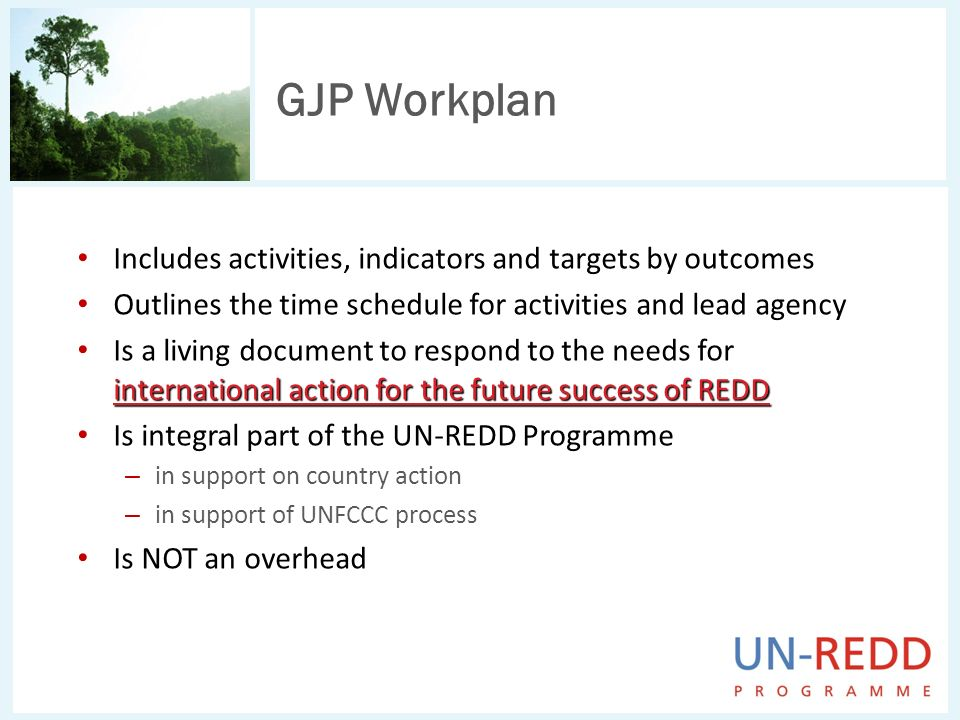 GJP Workplan Includes activities, indicators and targets by outcomes Outlines the time schedule for activities and lead agency international action for the future success of REDD Is a living document to respond to the needs for international action for the future success of REDD Is integral part of the UN-REDD Programme – in support on country action – in support of UNFCCC process Is NOT an overhead
