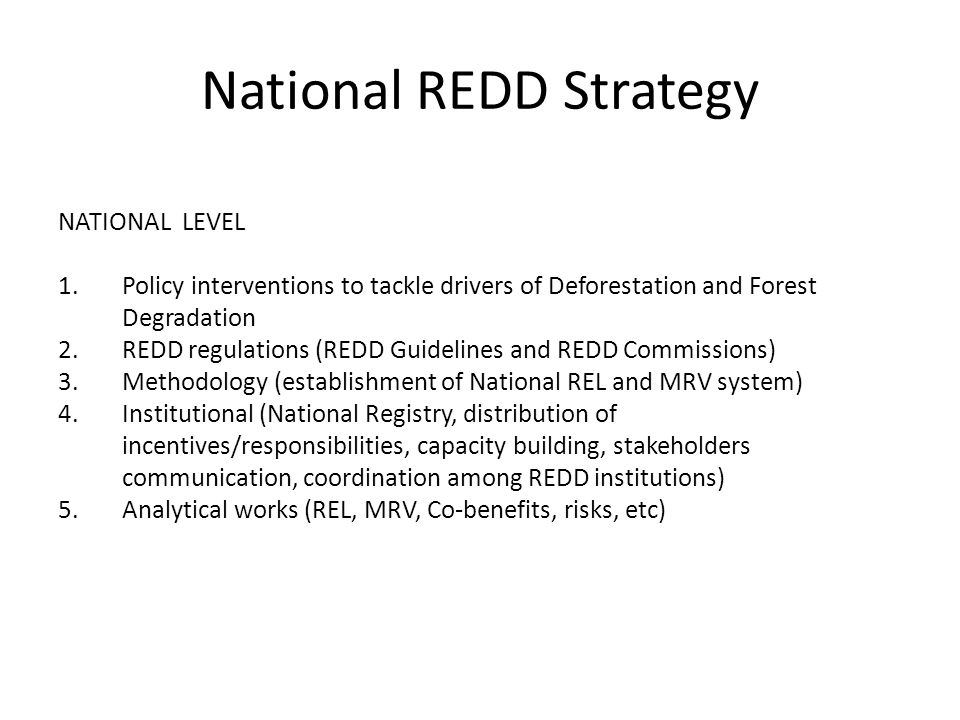 LEVELSTRATEGY CATEGORY NATIONAL LEVEL 1.Policy interventions to tackle drivers of Deforestation and Forest Degradation 2.REDD regulations (REDD Guidelines and REDD Commissions) 3.Methodology (establishment of National REL and MRV system) 4.Institutional (National Registry, distribution of incentives/responsibilities, capacity building, stakeholders communication, coordination among REDD institutions) 5.Analytical works (REL, MRV, Co-benefits, risks, etc)