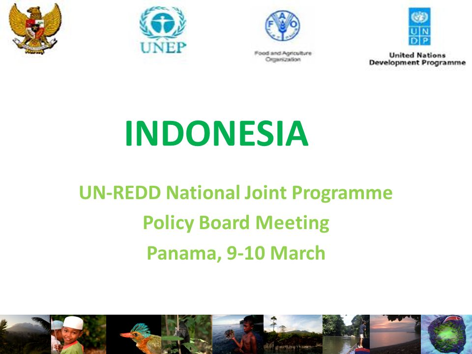INDONESIA UN-REDD National Joint Programme Policy Board Meeting Panama, 9-10 March