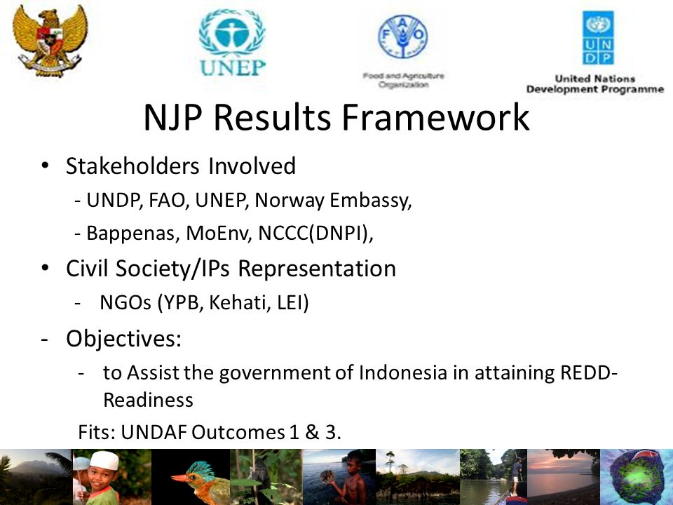 NJP Results Framework Stakeholders Involved - UNDP, FAO, UNEP, Norway Embassy, - Bappenas, MoEnv, NCCC(DNPI), Civil Society/IPs Representation -NGOs (