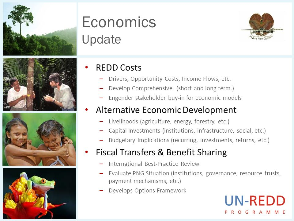 REDD Costs – Drivers, Opportunity Costs, Income Flows, etc. – Develop Comprehensive (short and long term.) – Engender stakeholder buy-in for economic