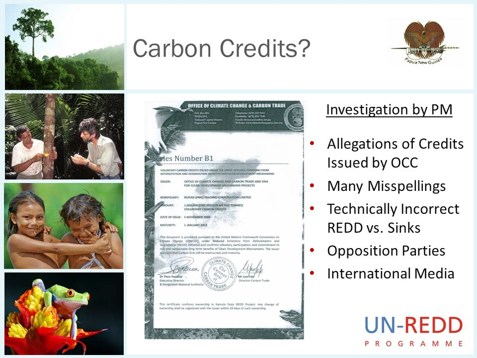 Carbon Credits? Investigation by PM Allegations of Credits Issued by OCC Many Misspellings Technically Incorrect REDD vs. Sinks Opposition Parties Int