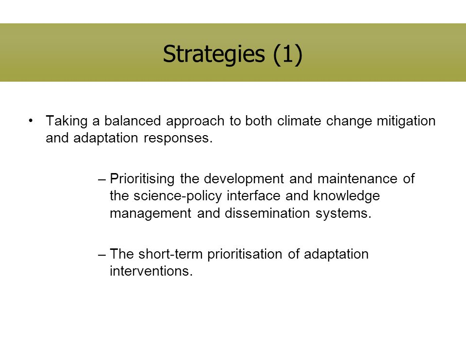 Strategies (1) Taking a balanced approach to both climate change mitigation and adaptation responses. –Prioritising the development and maintenance of