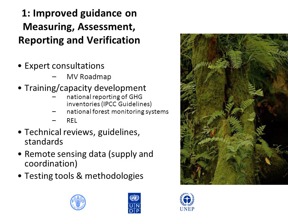 1: Improved guidance on Measuring, Assessment, Reporting and Verification Expert consultations –MV Roadmap Training/capacity development –national reporting of GHG inventories (IPCC Guidelines) –national forest monitoring systems –REL Technical reviews, guidelines, standards Remote sensing data (supply and coordination) Testing tools & methodologies