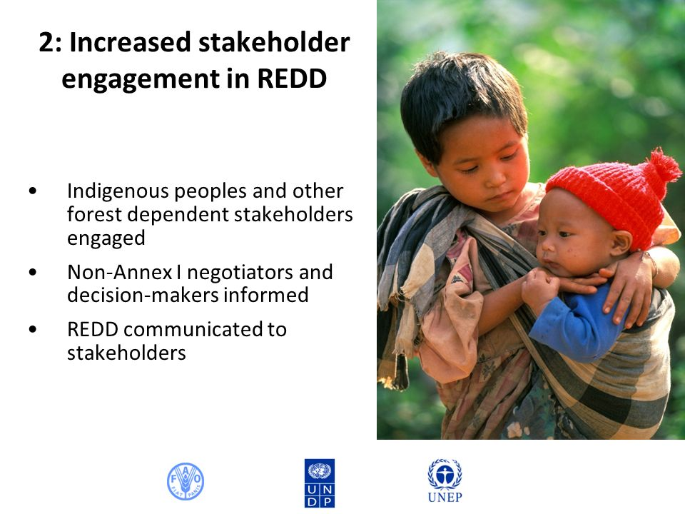 2: Increased stakeholder engagement in REDD Indigenous peoples and other forest dependent stakeholders engaged Non-Annex I negotiators and decision-makers informed REDD communicated to stakeholders