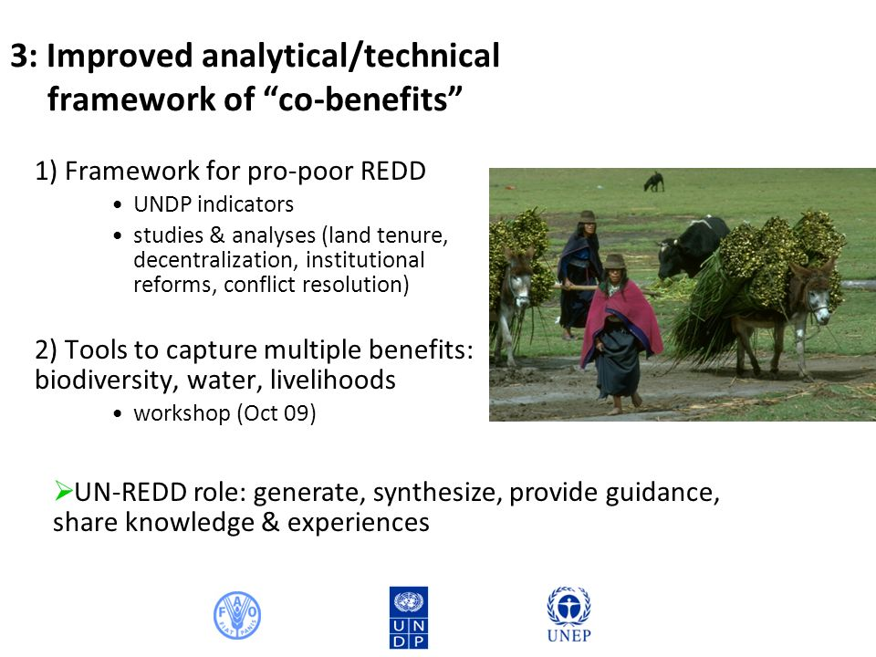 3: Improved analytical/technical framework of co-benefits 1) Framework for pro-poor REDD UNDP indicators studies & analyses (land tenure, decentralization, institutional reforms, conflict resolution) 2) Tools to capture multiple benefits: biodiversity, water, livelihoods workshop (Oct 09) UN-REDD role: generate, synthesize, provide guidance, share knowledge & experiences