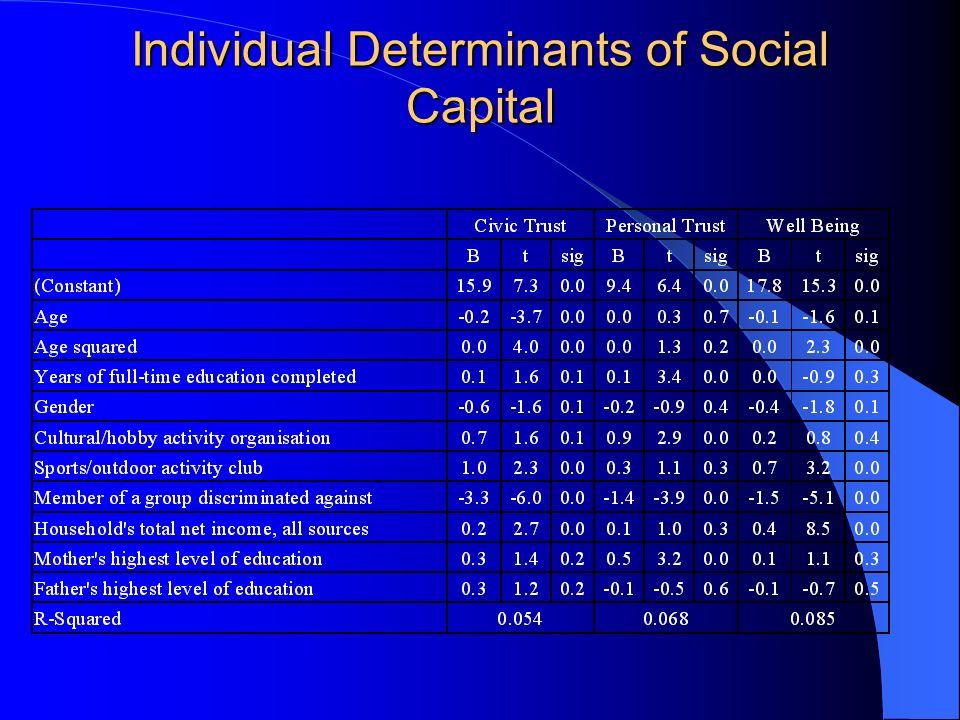 Individual Determinants of Social Capital
