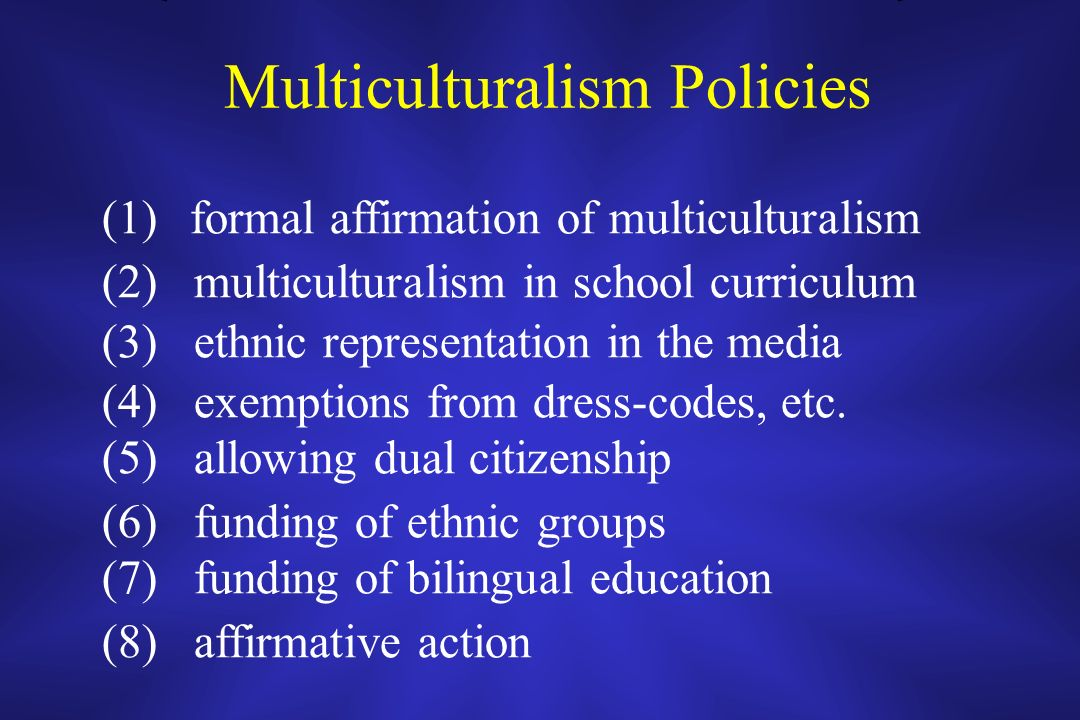 Multiculturalism Policies (1)formal affirmation of multiculturalism (2) multiculturalism in school curriculum (3) ethnic representation in the media (