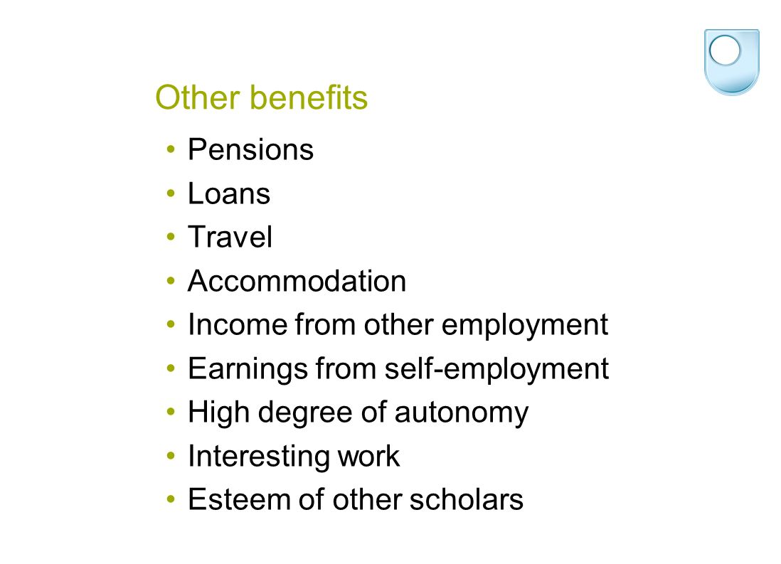 Other benefits Pensions Loans Travel Accommodation Income from other employment Earnings from self-employment High degree of autonomy Interesting work Esteem of other scholars