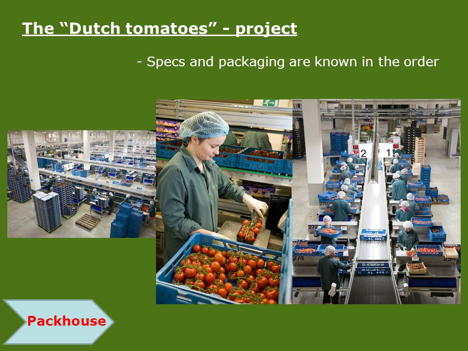 Packhouse The Dutch tomatoes - project - Specs and packaging are known in the order