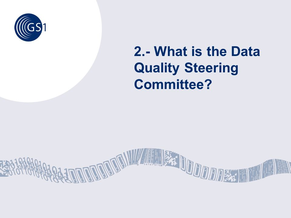 2.- What is the Data Quality Steering Committee?
