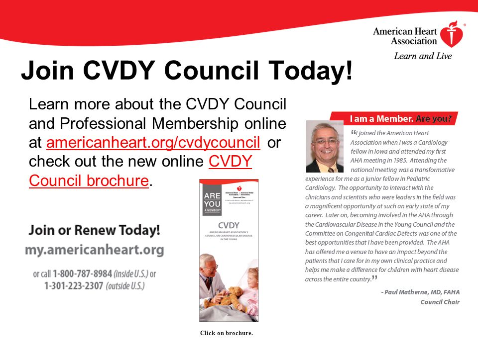 Join CVDY Council Today.
