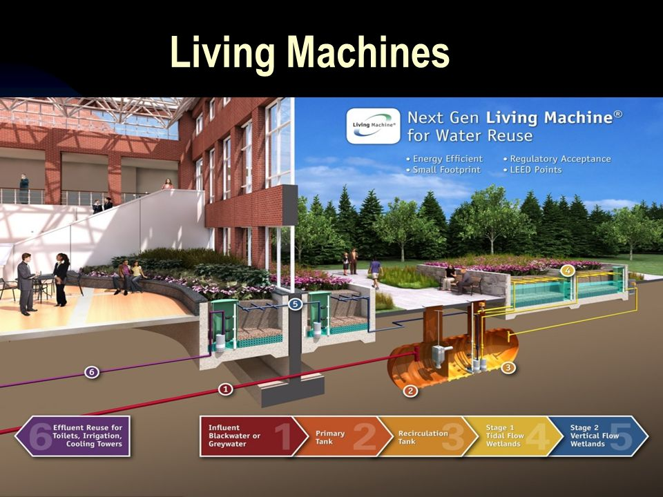 Living Machines