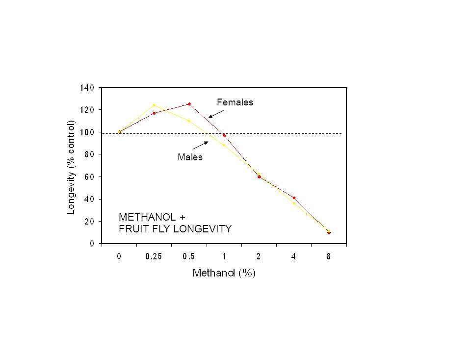 METHANOL + FRUIT FLY LONGEVITY Females Males
