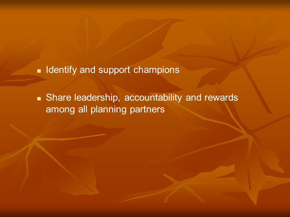 Identify and support champions Share leadership, accountability and rewards among all planning partners