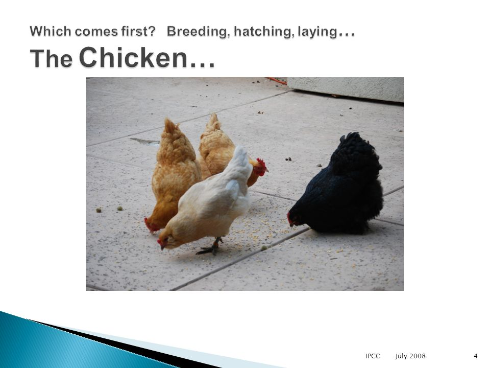 IPCC July 20084 Which comes first? Breeding, hatching, laying … The Chicken…