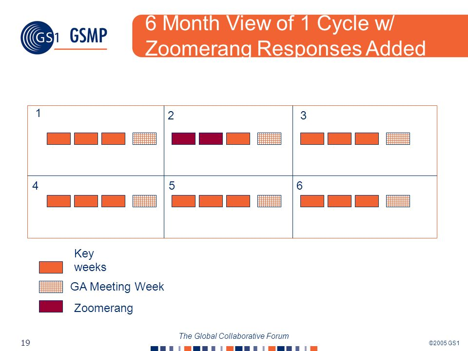 ©2005 GS1 19 The Global Collaborative Forum Key weeks GA Meeting Week Zoomerang 6 Month View of 1 Cycle w/ Zoomerang Responses Added