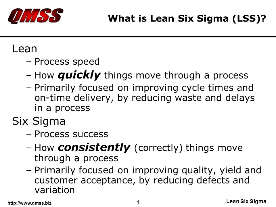 Lean Six Sigma 1 What is Lean Six Sigma (LSS).