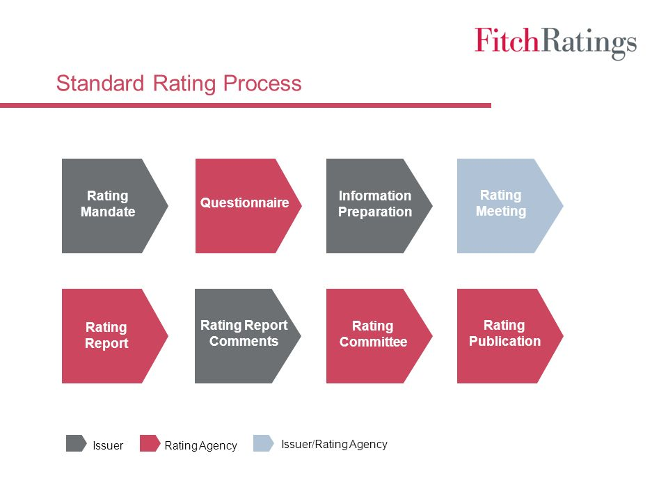Standard Rating Process Rating Mandate Questionnaire Information Preparation Rating Meeting Rating Publication Rating Report Rating Committee Rating Report Comments IssuerRating Agency Issuer/Rating Agency