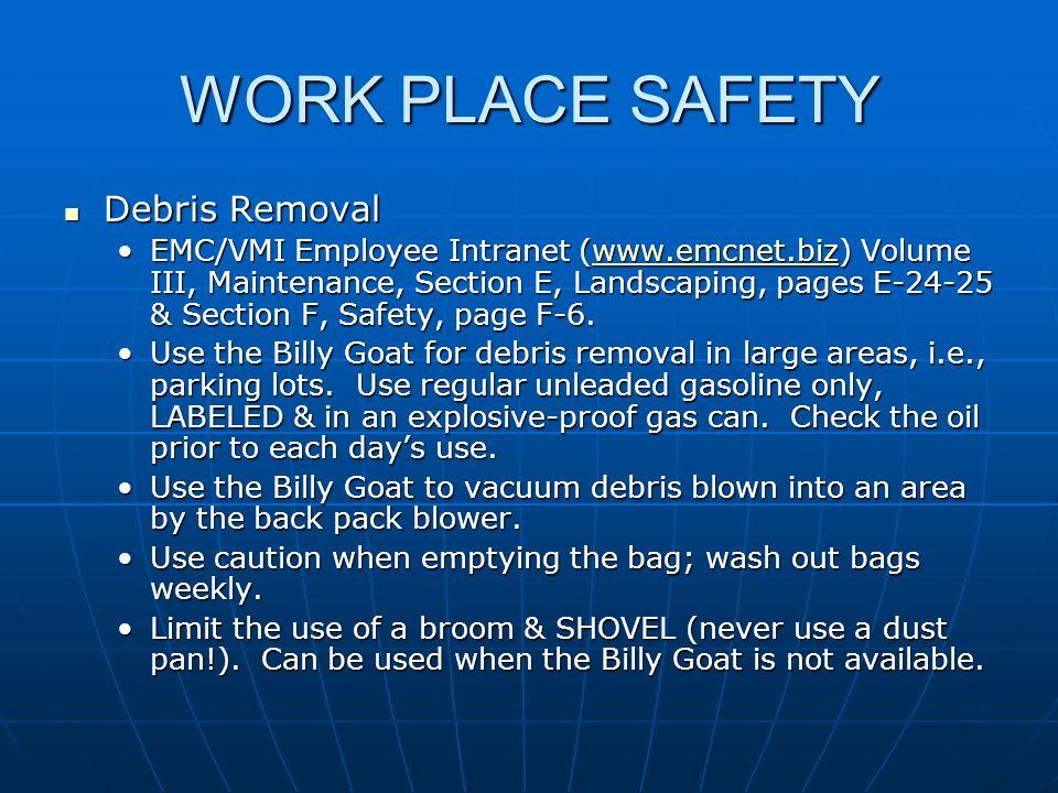 WORK PLACE SAFETY Debris Removal Debris Removal EMC/VMI Employee Intranet (www.emcnet.biz) Volume III, Maintenance, Section E, Landscaping, pages E-24