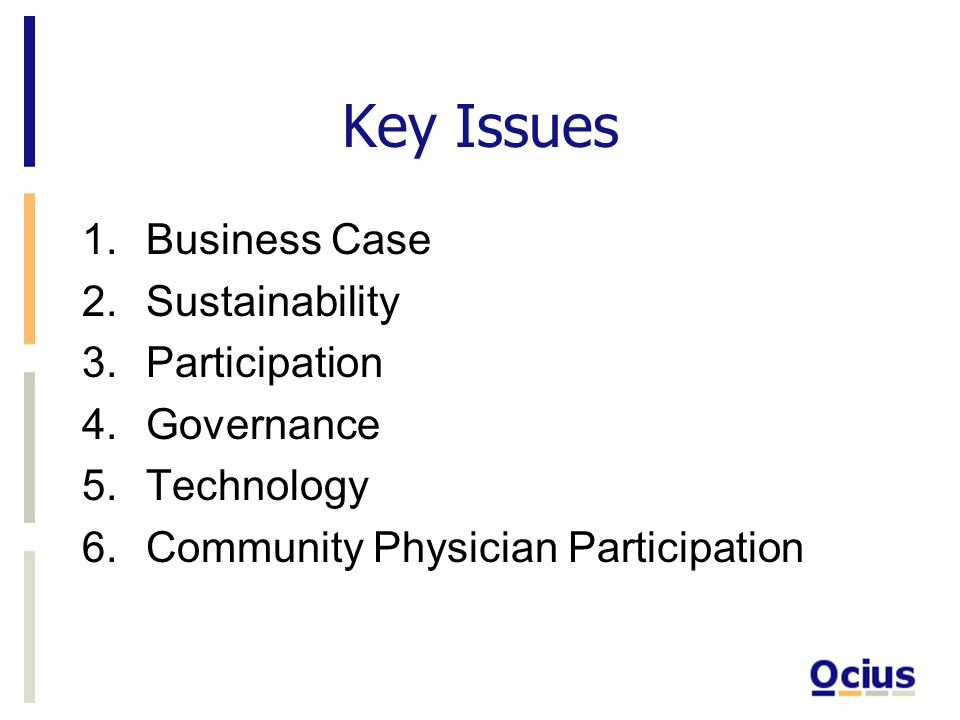 Key Issues 1.Business Case 2.Sustainability 3.Participation 4.Governance 5.Technology 6.Community Physician Participation