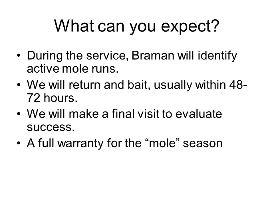What can you expect. During the service, Braman will identify active mole runs.