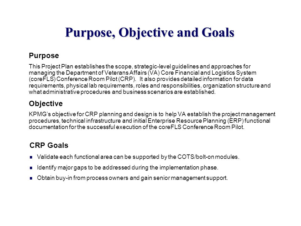Purpose, Objective and Goals Purpose This Project Plan establishes the scope, strategic-level guidelines and approaches for managing the Department of