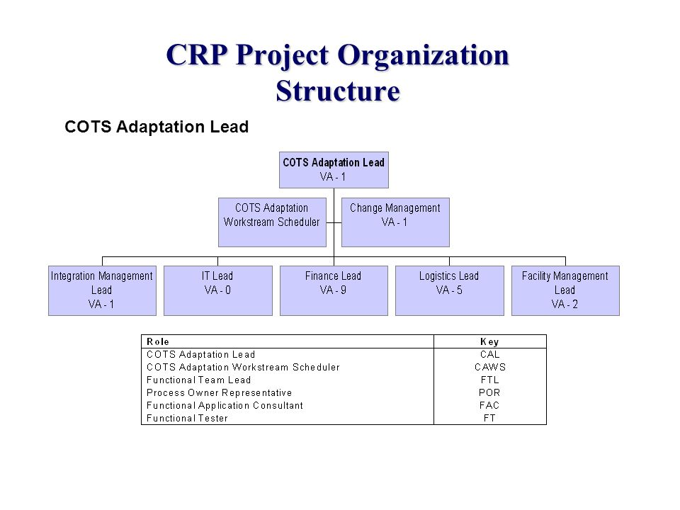 CRP Project Organization Structure COTS Adaptation Lead
