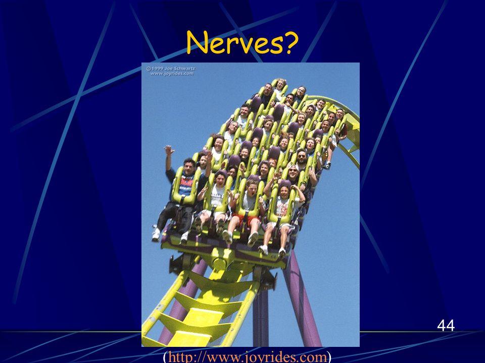 44 Nerves (http://www.joyrides.com)http://www.joyrides.com