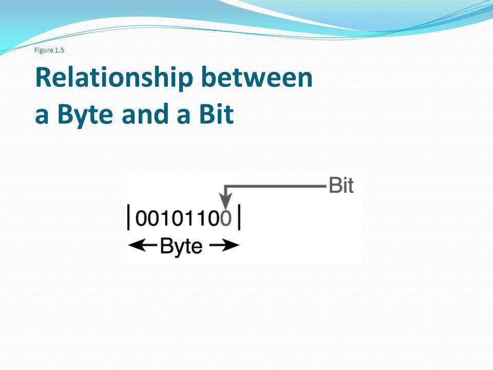 Figure 1.5 Relationship between a Byte and a Bit
