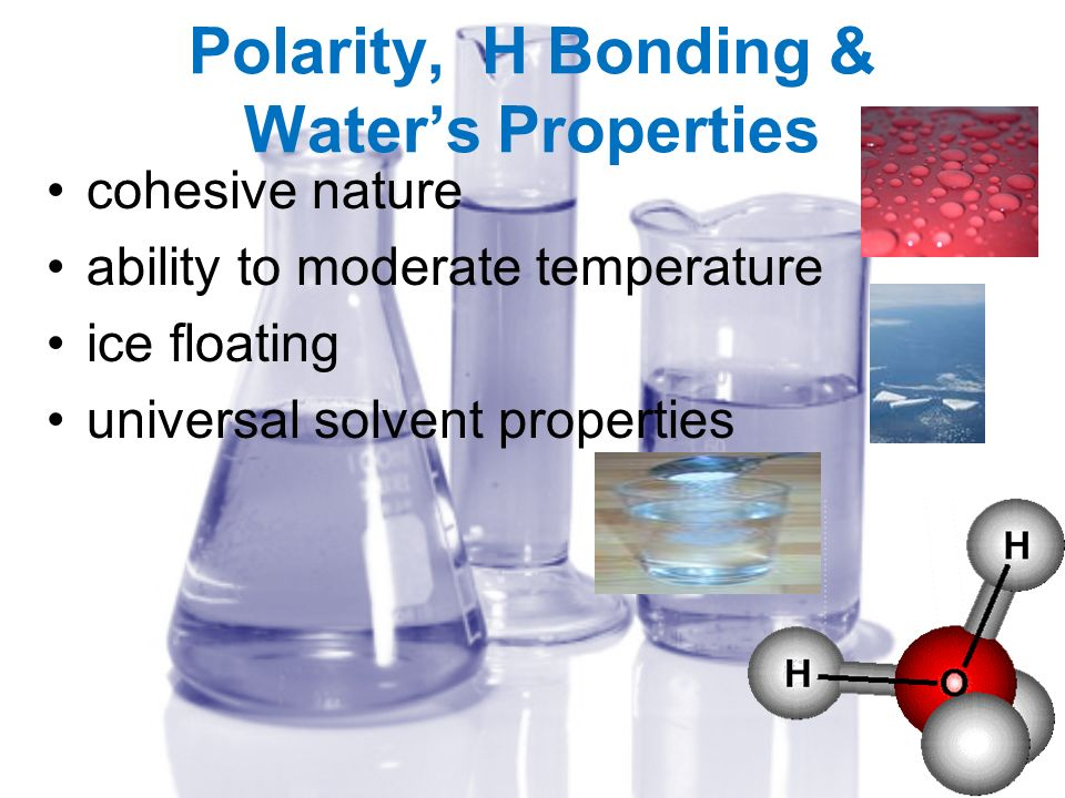 Polarity, H Bonding & Waters Properties cohesive nature ability to moderate temperature ice floating universal solvent properties