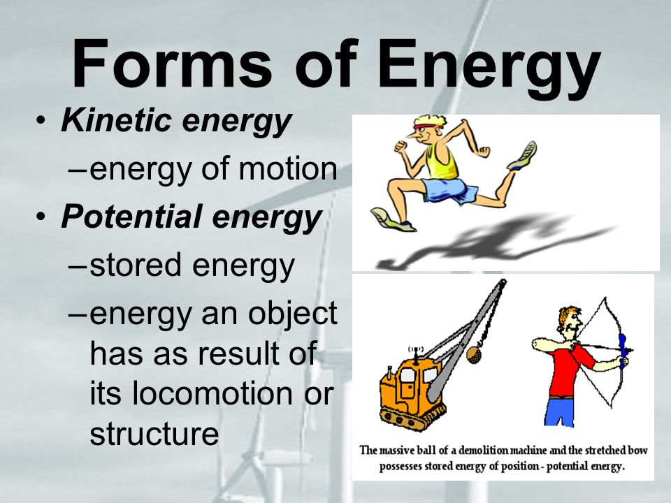 Forms of Energy Kinetic energy –energy of motion Potential energy –stored energy –energy an object has as result of its locomotion or structure