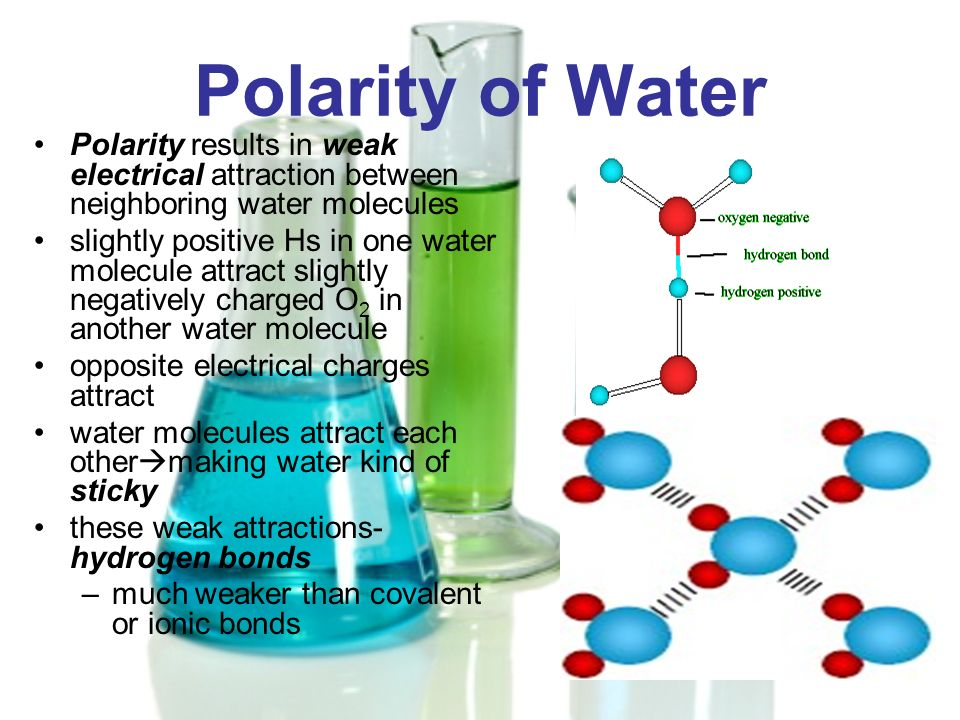 Polarity of Water Polarity results in weak electrical attraction between neighboring water molecules slightly positive Hs in one water molecule attrac