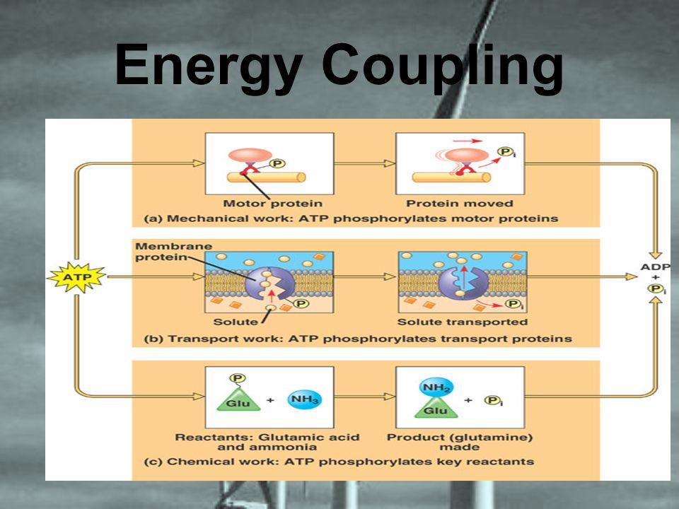 Energy Coupling