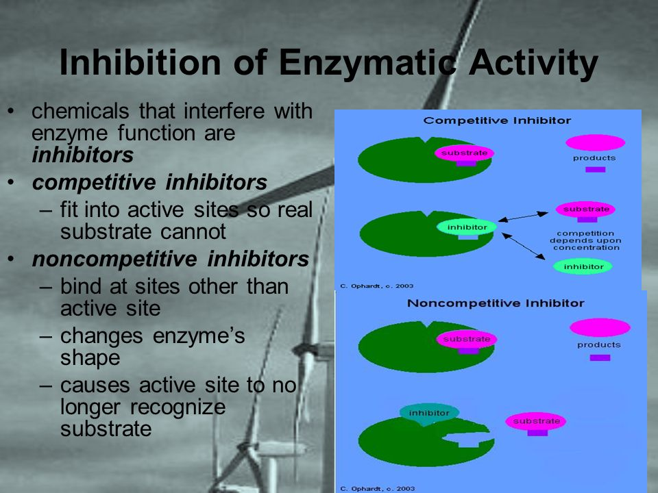 Inhibition of Enzymatic Activity chemicals that interfere with enzyme function are inhibitors competitive inhibitors –fit into active sites so real su