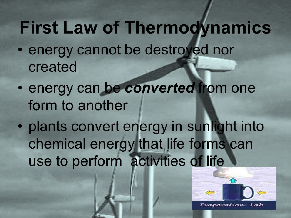 First Law of Thermodynamics energy cannot be destroyed nor created energy can be converted from one form to another plants convert energy in sunlight