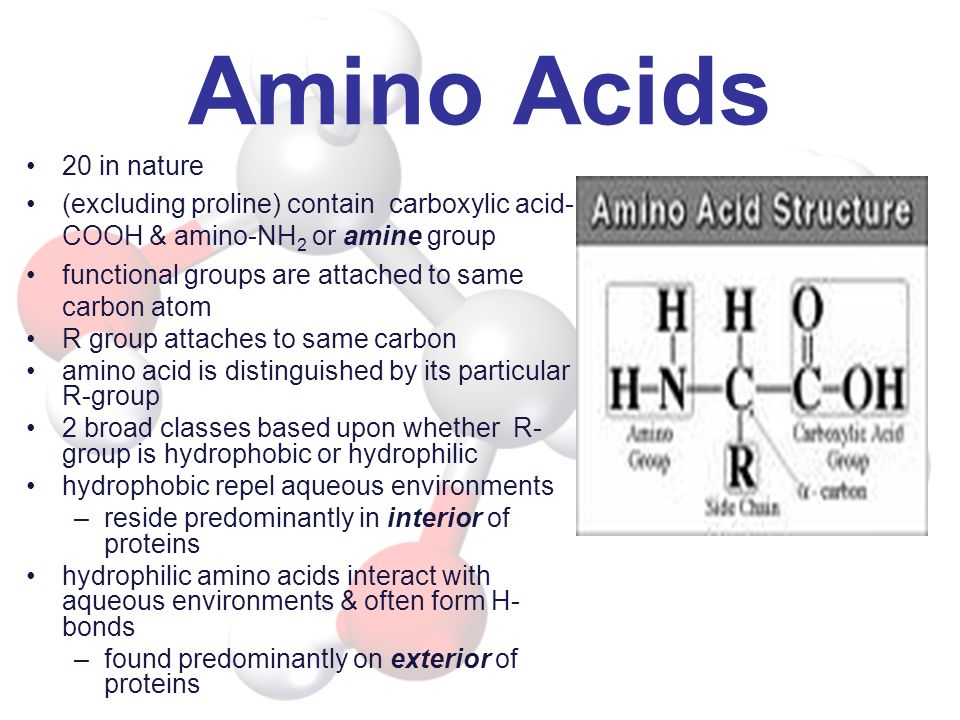 Amino Acids 20 in nature (excluding proline) contain carboxylic acid- COOH & amino-NH 2 or amine group functional groups are attached to same carbon a