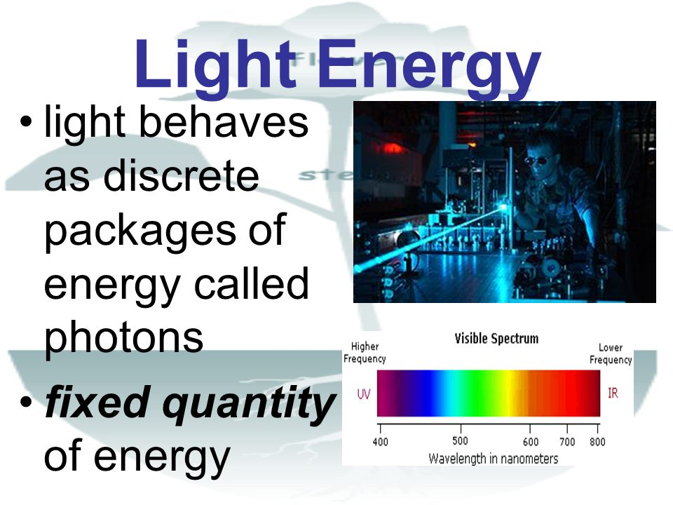 Light Energy light behaves as discrete packages of energy called photons fixed quantity of energy